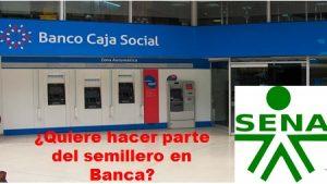SENA CAJA SOCIAL