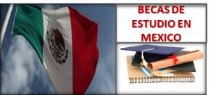 BECAS EN MEXICO