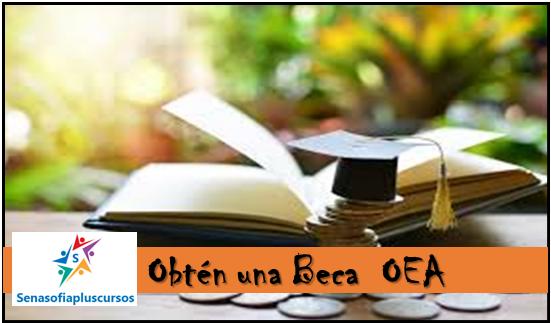 beca OEA